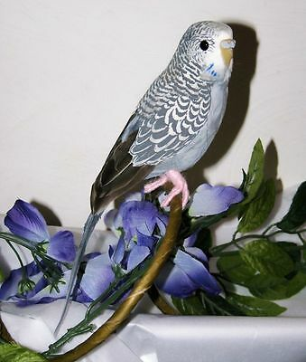"Gray/Blue PARAKEET BUDGIE REPLICA Collectible FAKE taxidermy 8"" Bird prop NEW"