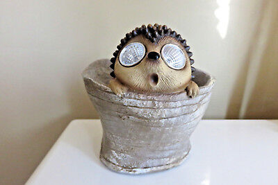 Hedgehog Planter Solar Pot Garden Home Decor Wide Open  Eyes Pot New 7 in.T