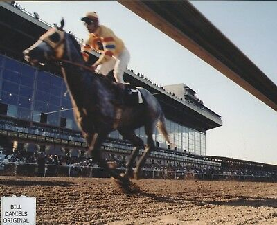 Image result for 1969 preakness stakes images