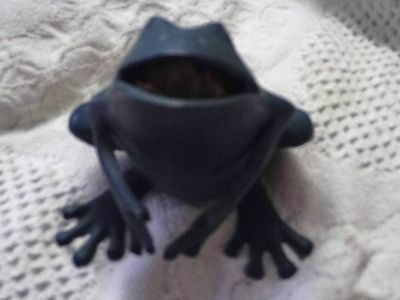 Metal Frog With Potupori Inside For Fragrance