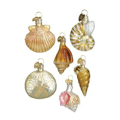 Set of 6 Sea Shells Blown Glass Christmas Ornament by Old World Christmas