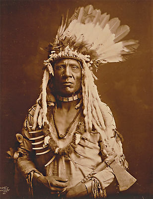 "1900 Old Photo, Native American Portrait, tomahawk, Piegan, Headdress, 20""x16"""
