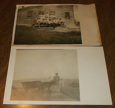 Postcard Pair Antique RPPC - Woman with Cows - Group Photo on Steps  - Unused