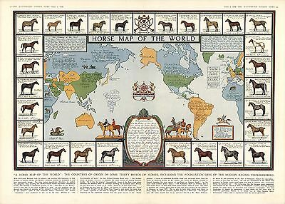 1936 pictorial map Horses of World countries of origin breeds POSTER 8788000