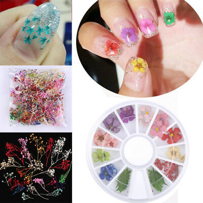 12 Color/Box Real Dry Dried Flower Leaves 3D UV Gel Acrylic False Tips Nail Art