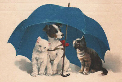 VERY SWEET JACK RUSSELL TERRIER DOG & KITTENS Cats UMBRELLA Meissner & Buch PC