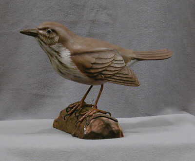 Hand Carved & Painted Wooden State Bird of Vermont Hermit Thrush Artist Signed
