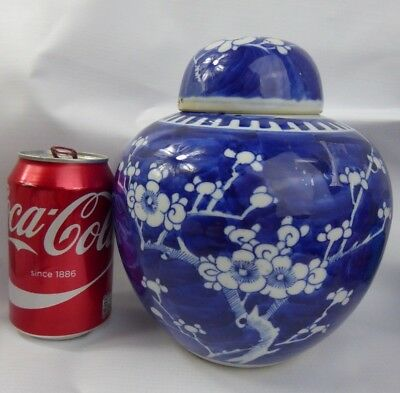 Chinese Antique Porcelain Prunus Jar Large Size - Kangxi Mark - Qing