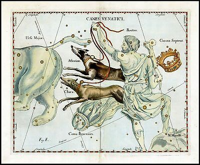 1687 antique CELESTIAL MAP constellation HERDSMAN Hevelius HUNTING DOGS Bootes 5