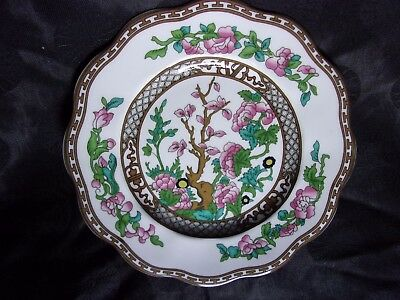 """Coalport England """"THE INDIAN TREE"""" 8"""" SCALLOPED PLATE, Mint"""