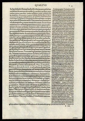 6th Cent Latin Grammar Constantinople 1492 Incunable Leaf The Opera of Priscian