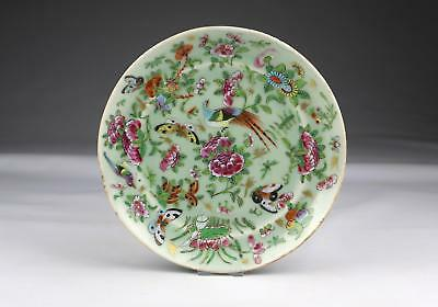 Fine Antique 19thC Chinese Qing Famille Rose Canton Butterfly Porcelain Dish
