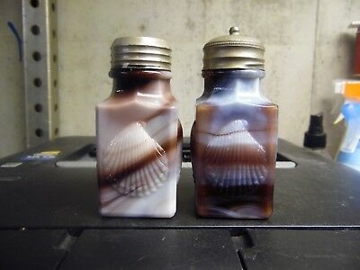 Rare Antique Pair Of Challinor , Taylor Sea Shell Salt And Peppers Shakers