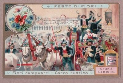 Blooming Wild Flower Parade Float Cart Carro  NICE c1903 Trade Ad Card