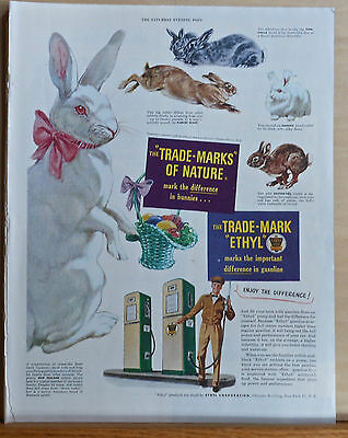 1950 magazine ad for Ethyl gas - 5 different rabbit types, Trademarks of Nature