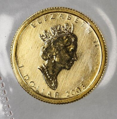 2003 CANADA 1/20th oz .9999 GOLD MAPLE LEAF SCARCE DATE LOW MINTAGE UNC (6664)