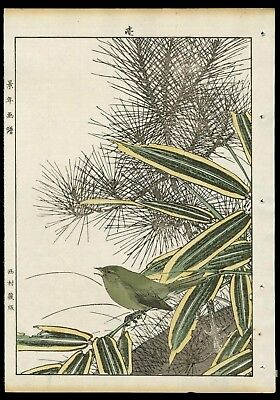 1892 Orig JAPANESE WOODBLOCK PRINT KEINEN KACHO GAFU Bird & Flower - Nightingale