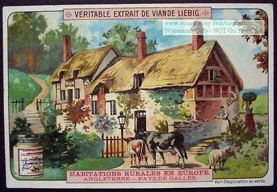 Wales England Farm House Welsh 1905 Trade Ad Card