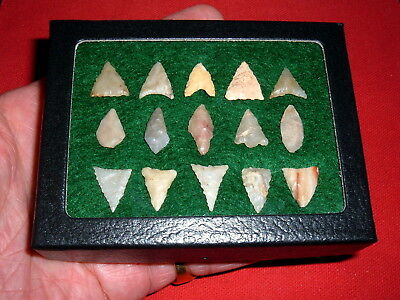 (15) Select Mini Sahara Neolithic Points, Tools W/CASE, Prehistoric Arrowheads