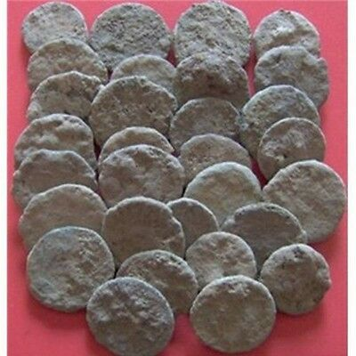 UNCLEANED AND UNGRADED CRUSTY ROMAN COINS  PER coin buying/Bidding !!