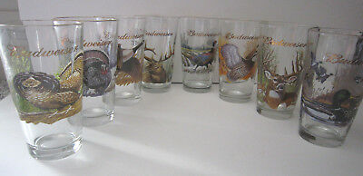 Budweiser Wildlife Series Beer Glass Set of 8 Gold Rim