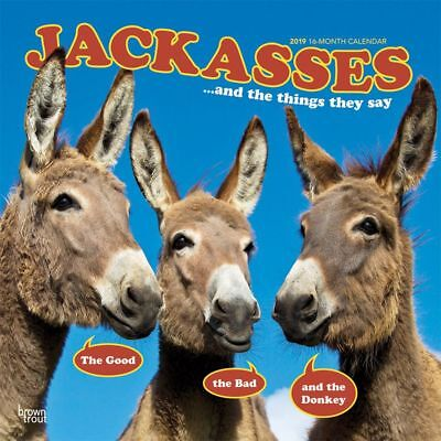 2019 Jackasses Wall Calendar, More Animals by BrownTrout