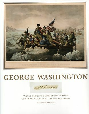 """George Washington """"eight hundred"""" Hand-Written Words from Larger Document"""