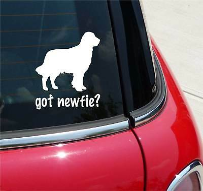 Got Newfie? Newfoundland Dog Graphic Decal Sticker Car Vinyl
