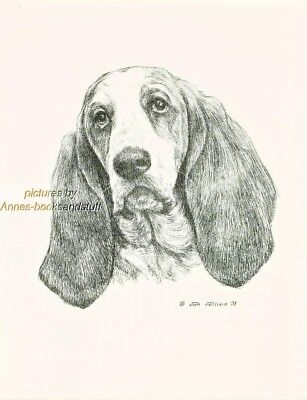 #67 BASSET HOUND *   dog art print * Pen and ink drawing * Jan Jellins