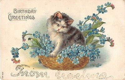 Adorable Kitten in Basket Full of Forget-Me-Nots - Old Birthday PC - Ser.565
