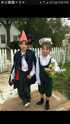 Over the Garden Wall halloween costumes ooak Wirt Greg cosplay kids otgw cartoon