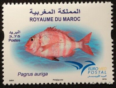 MAROKKO -  EUROMED Postal Joint Issue  Fische: Rotbandbrasse  2016**  !TOP!