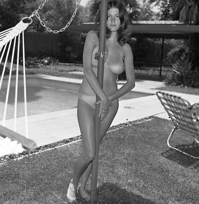 1960s Ron Vogel Negative, buxom nude pin-up girl Lana Wilfred, t213598