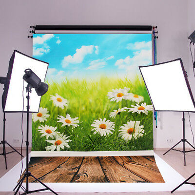 Daisy Spring Kids Photography Backdrop Silk Poster Outdoor Photo Background