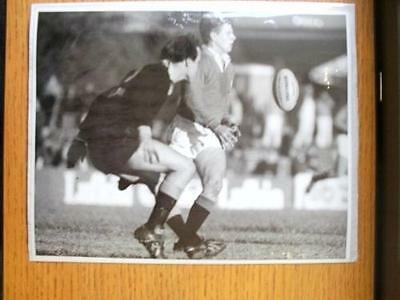 18/08/1989 British Lions Press Photo: N.S.W Country (In Newcastle) - Lions Stand
