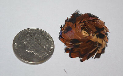 Rare Tiny Pomo Indian Feathered Gift Basket Native American MIniature #3