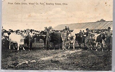 Bowling Green, Ohio, Postcard, Prize Cattle Show, Wood County Fair. 1907