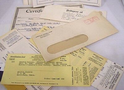 Vintage Lge LOT Cocker Spaniel Pedigree Breed and Show Info Stud Papers 1940s