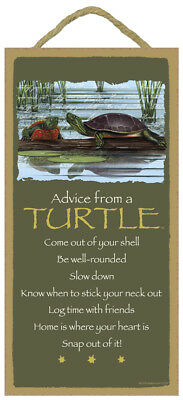Fun ADVICE FROM A TURTLE wood INSPIRATIONAL SIGN wall NOVELTY PLAQUE Animal USA