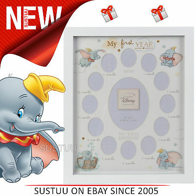 Disney Dumbo Magical Beginning Photo Frame My First Year│13 Photos│Gift For Baby