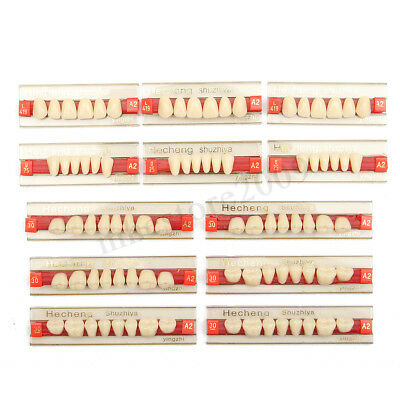 3 Set of 84*1 Acrylic Resin Denture Teeth VITA Color A2 Upper Lower Shade