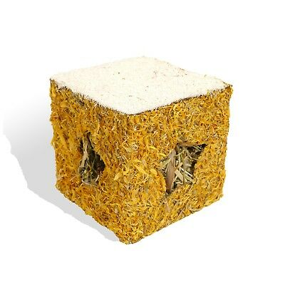 Rosewood Naturals Small Pet Golden Gift Box Christmas Treat Edible Forage Herbal