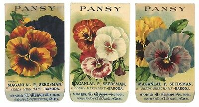 Set of 3 Different Antique Flower Seed Packets, Pansy, Pansies, 1910-20's, H06