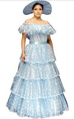 WOMENS SOUTHERN BELLE Dress & Hat Costume Plus Size Fw5716 - $49.99 ...