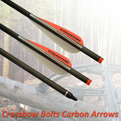 20in Crossbow Bolts Carbon Arrows Easton Vanes for Archery Hunting High Quality