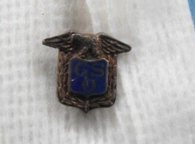Government Services Office pin