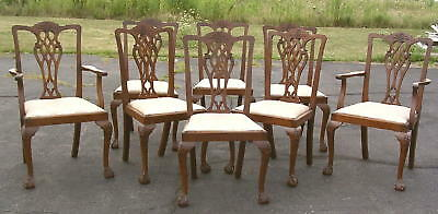 8 MATCHING Solid Mahogany Chippendale Dining Chairs HAND CARVED 1930's England
