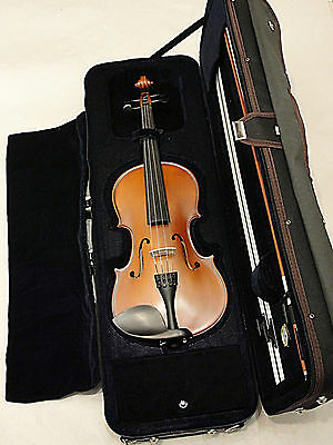 Palatino VN-650 Genoa Intermediate Violin Outfit  4/4 Size Full size