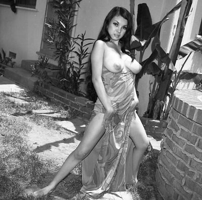 1960s Ron Vogel Negative, busty nude Asian pin-up girl Toni Kim, t216384