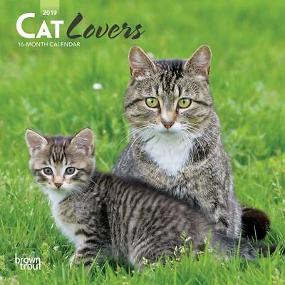 2019 Cats Mini Wall Calendar, Cat Breeds by BrownTrout